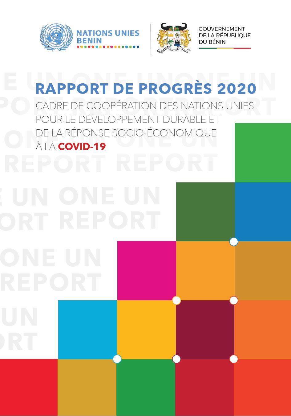 RAPPORT DE PROGRES 2020